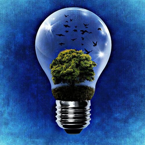 We want environmentally responsible brands!