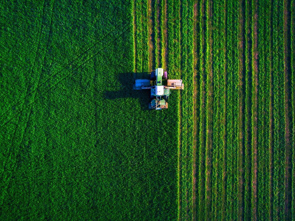 Food chain circular economy