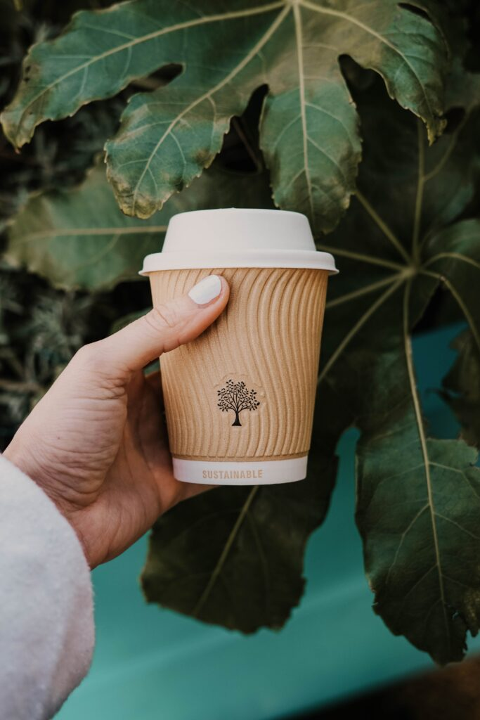 A Person Holding A Disposable Coffee Cup